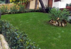 Κήπος στο Διόνυσο
