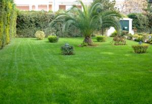 Κήπος στη Νέα Ερυθραία