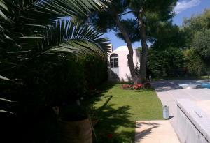 Κήπος στη Βραυρώνα Αττικής